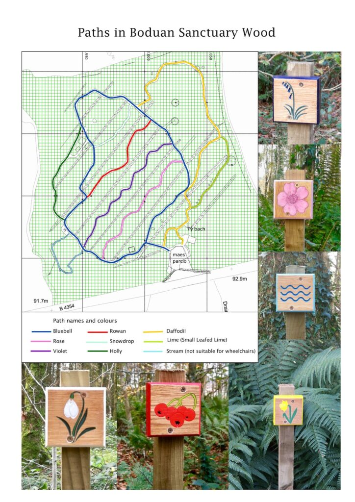 Each path in Boduan Sanctuary Wood is labeled with a colour and marked with a sign
