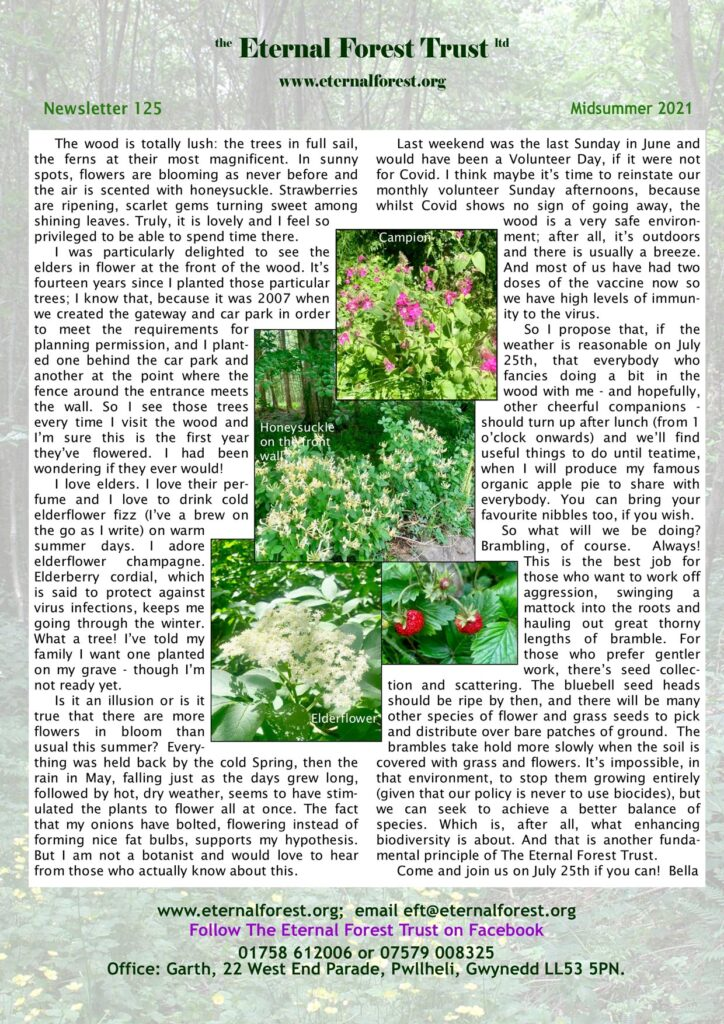 Newsletter 125 - June 2021